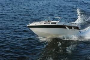 Boat Insurance Agent, Roseburg, OR